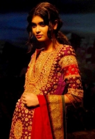 Diana Penty in traditional dress picture